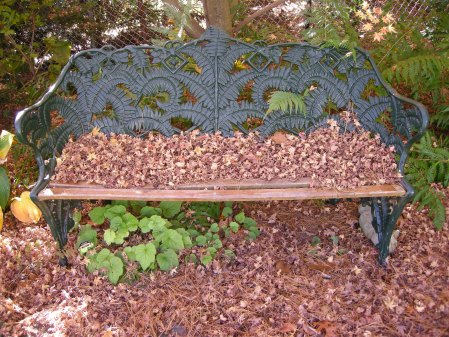 fern bench at Carolyn's Shade Gardens