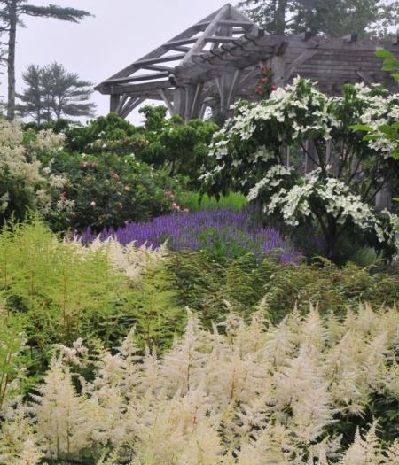 Rose Garden Freeman Gardens: Coastal Maine Botanical Gardens