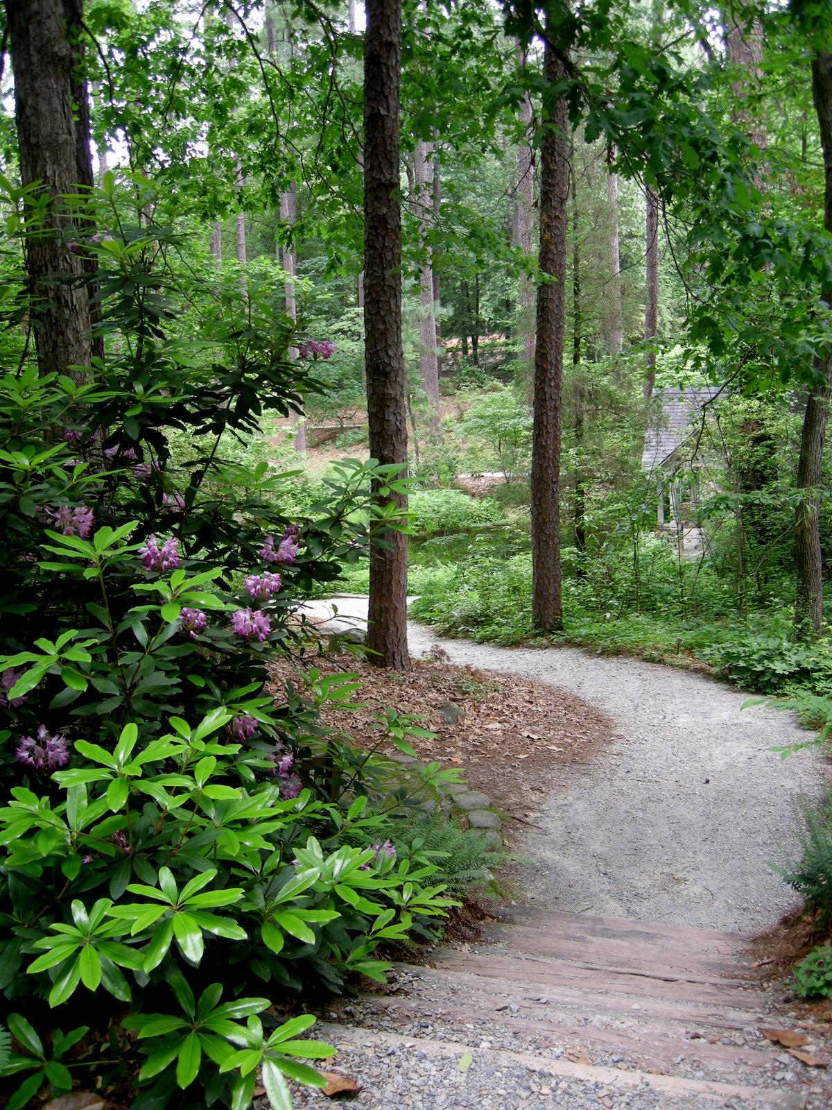 The wildlife garden in the h l blomquist garden of native plants -  The H L Blomquist Garden Path
