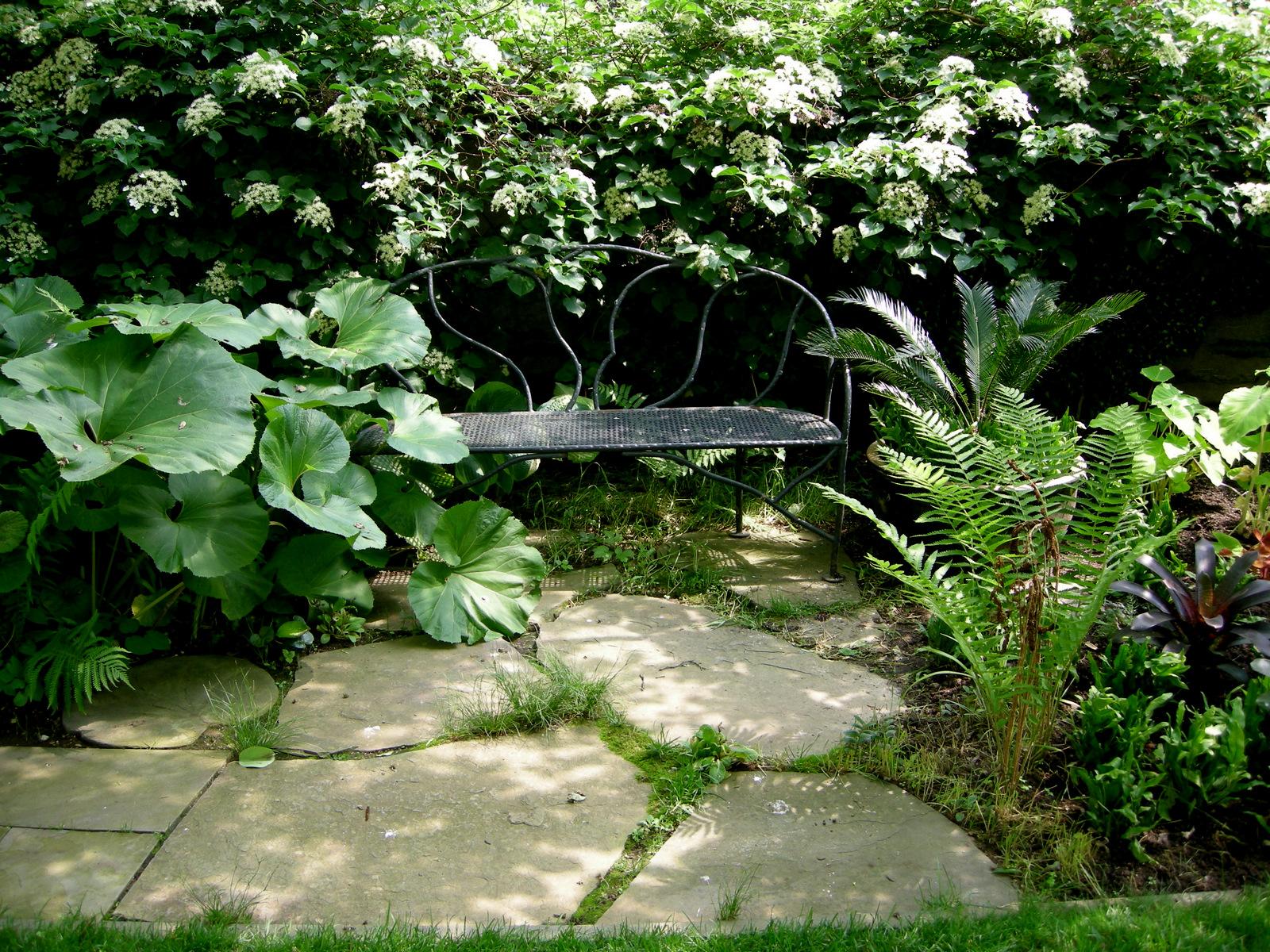 August 2011 Carolyn S Shade Gardens