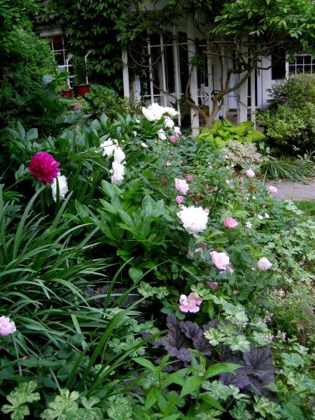 Composting Carolyn 39 S Shade Gardens