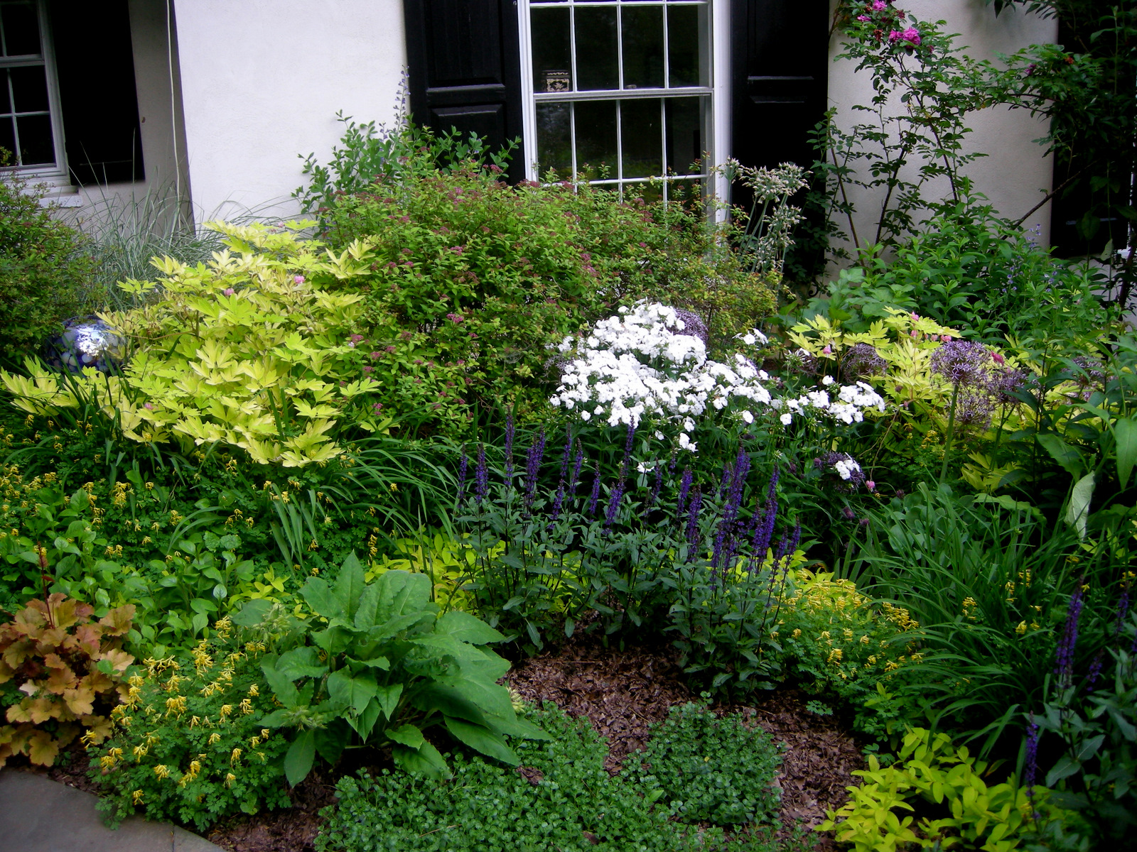 Top 28 perennial garden plans for partial shade for Small flower garden design