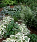 silver and blue bed at Carolyn's ShadeGardens
