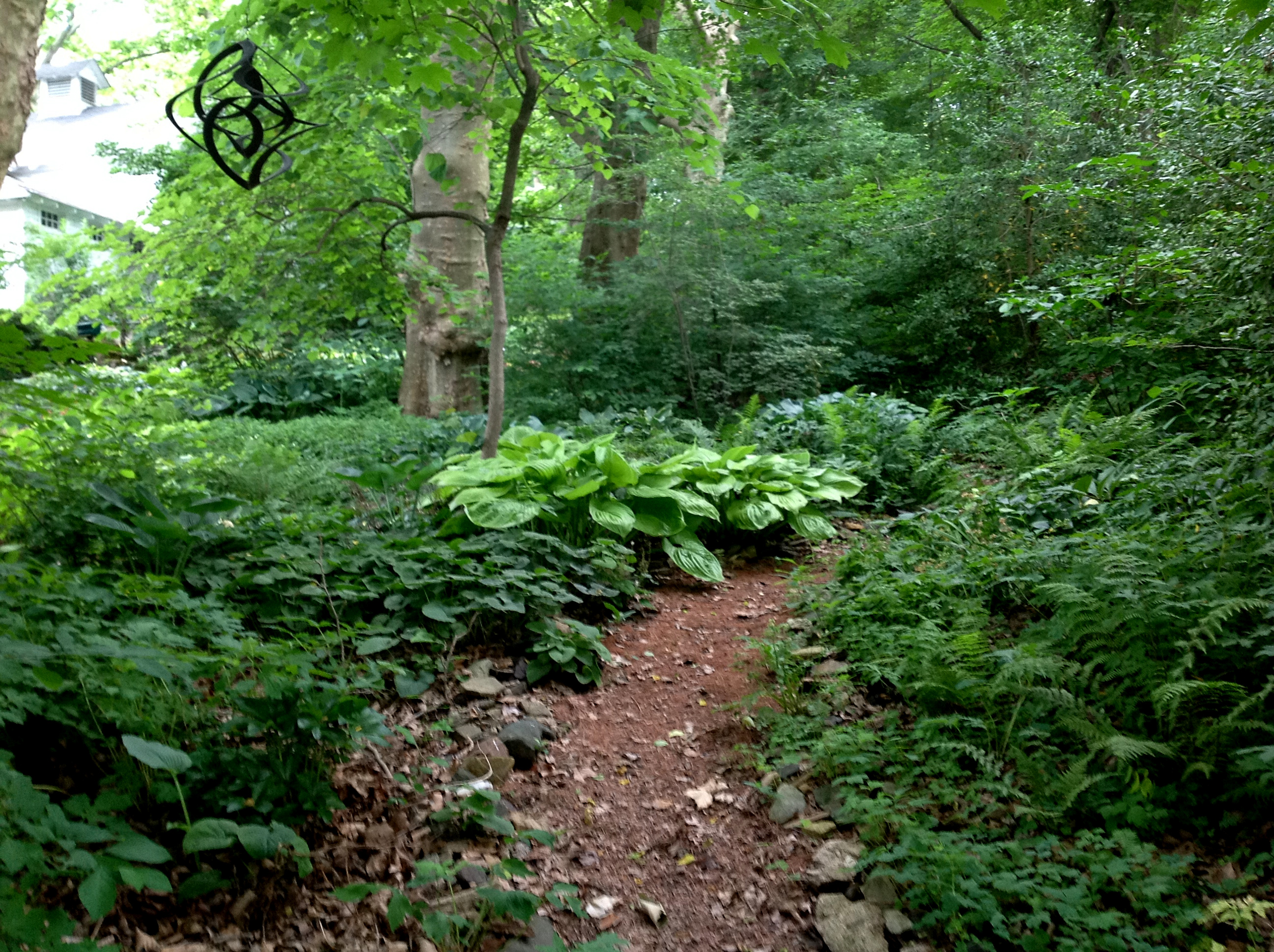 You asked for the long view part 2 carolyn 39 s shade gardens for Woodland garden designs