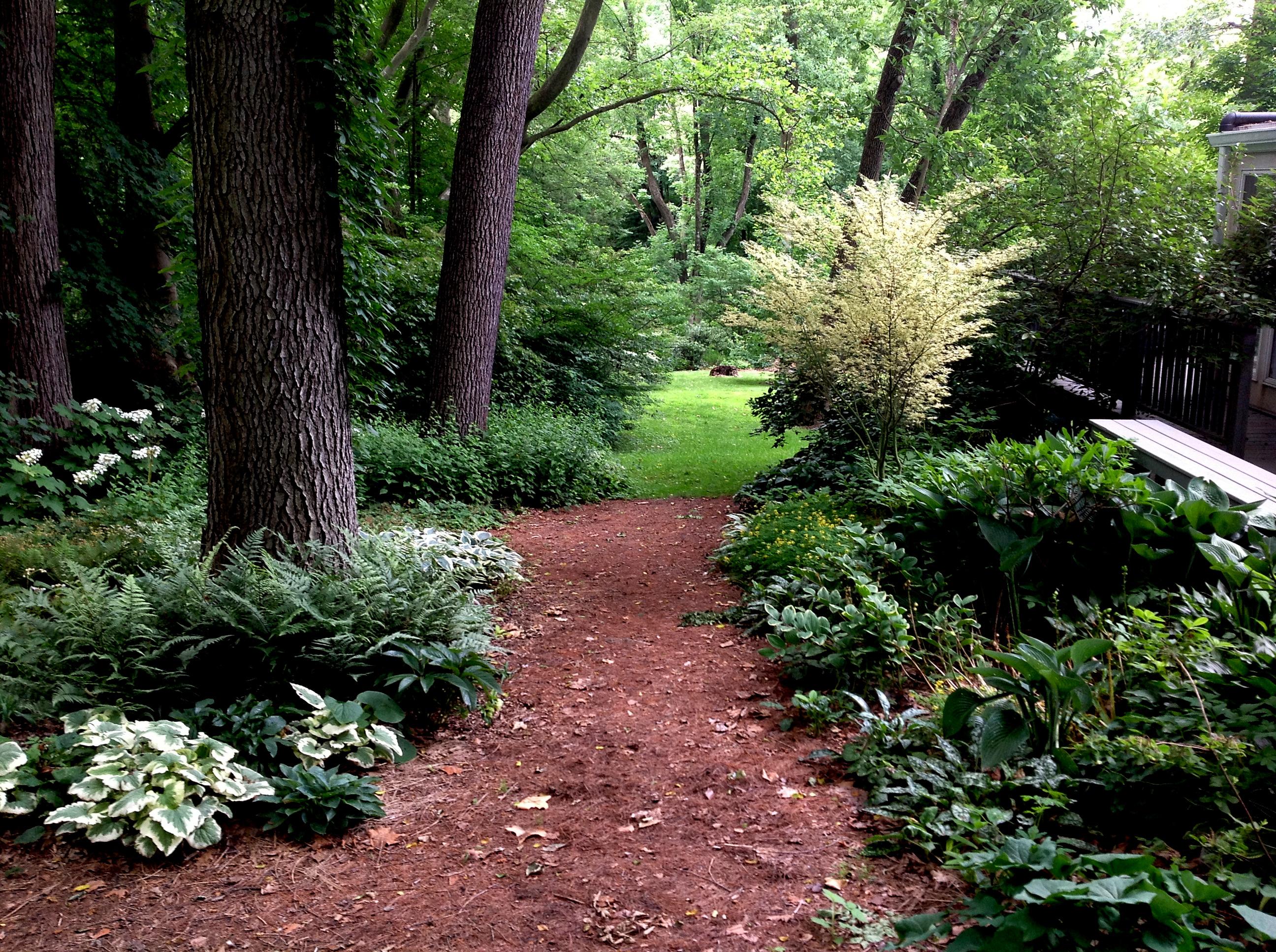 Ipad screen resolution carolyn 39 s shade gardens for Part shade garden designs