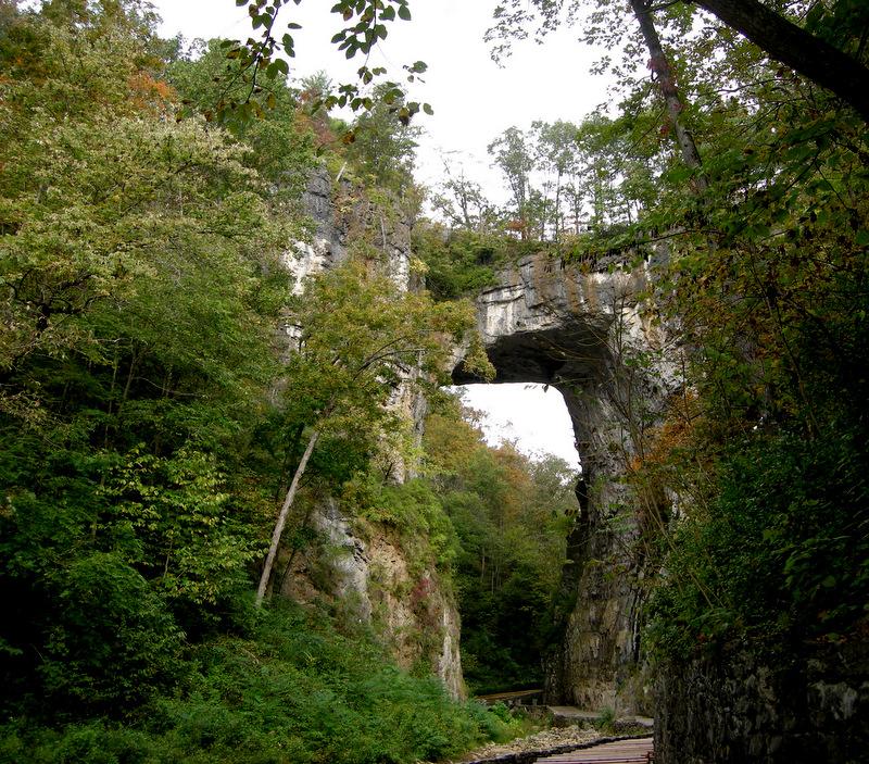 Natural bridge caverns va coupon