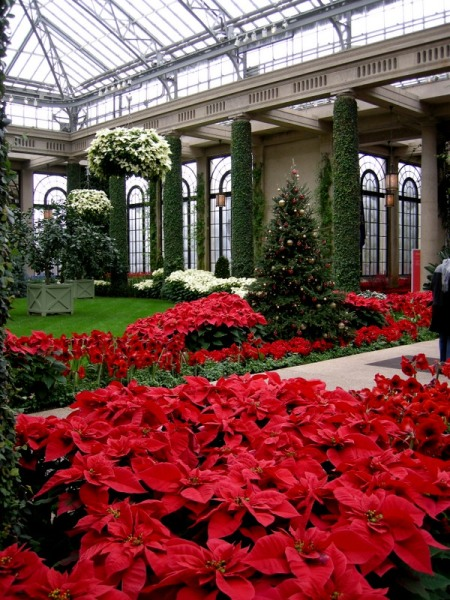 Longwood conservatory