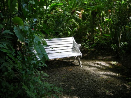 St Lucia botanical garden