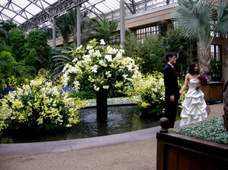 Longwood East Conservatory