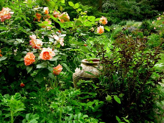 Pleasurable Pairings For Early Summer Part 1 Carolyn 39 S