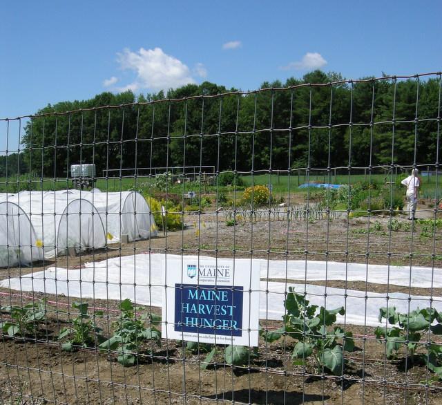 2013 Brunswick (Maine) Garden Tour