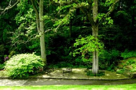 Winterthur quarry garden