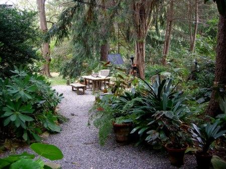 David Culp's Garden Fall 2013-003