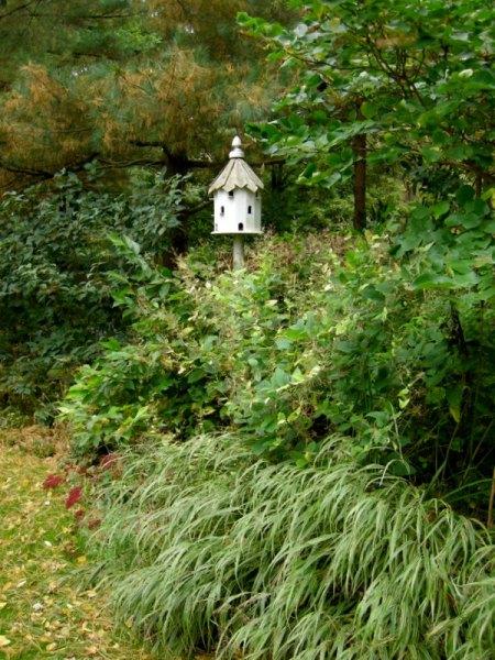 David Culp's Garden Fall 2013-005