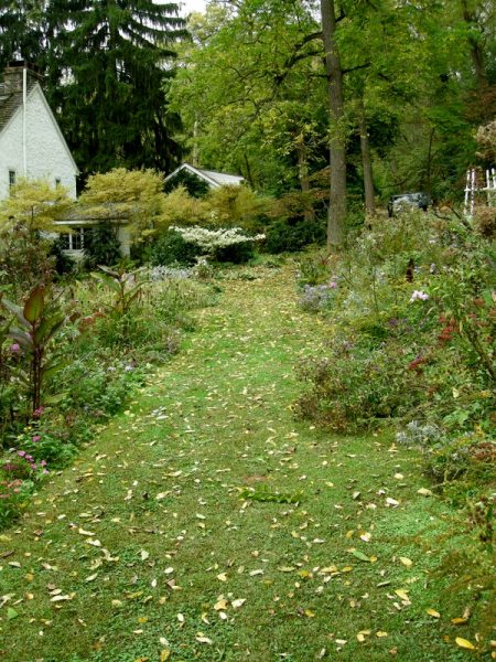 David Culp's Garden Fall 2013-009