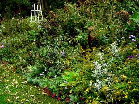 David Culp's Garden Fall 2013-010