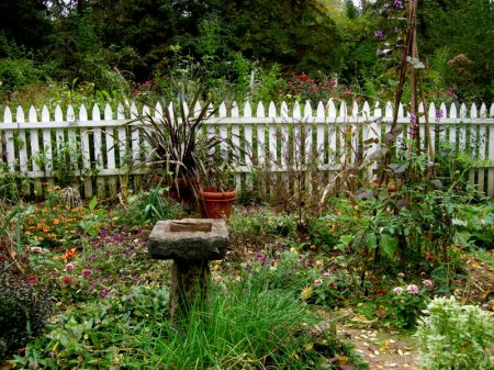 David Culp's Garden Fall 2013-011