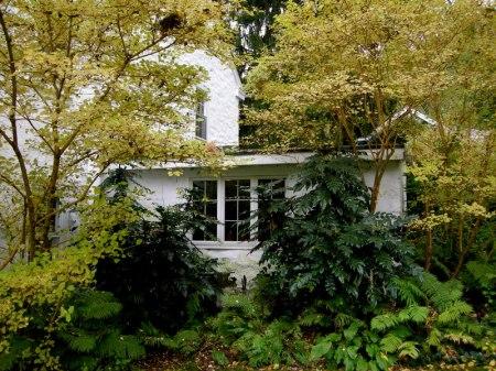 David Culp's Garden Fall 2013-014