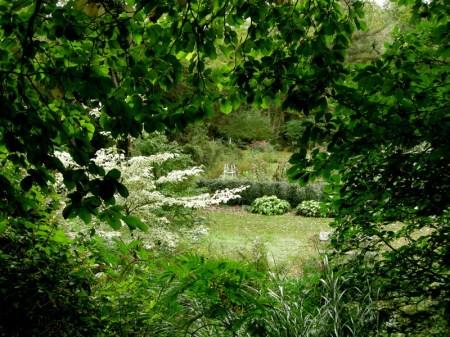 David Culp's Garden Fall 2013-017