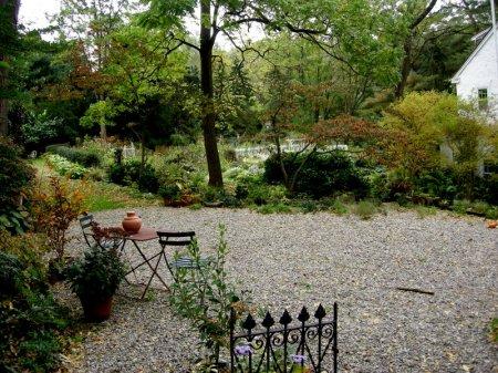 David Culp's Garden Fall 2013