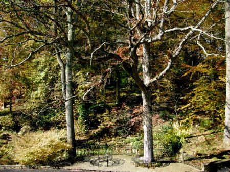 Winterthur Fall 2013-014
