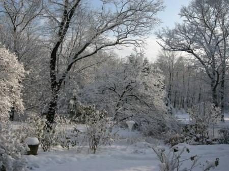 Snow storm 12-10-2013 12-10-2013 4-14-049