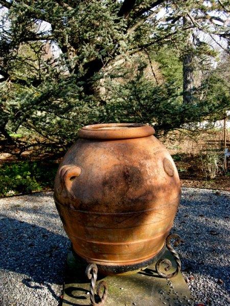 Scott Arboretum at Swarthmore College 12-1-2013 2-19-37 PM