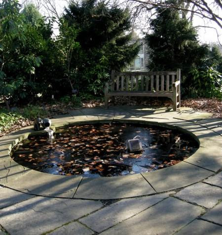 Scott Arboretum at Swarthmore College 12-1-2013 2-27-18 PM