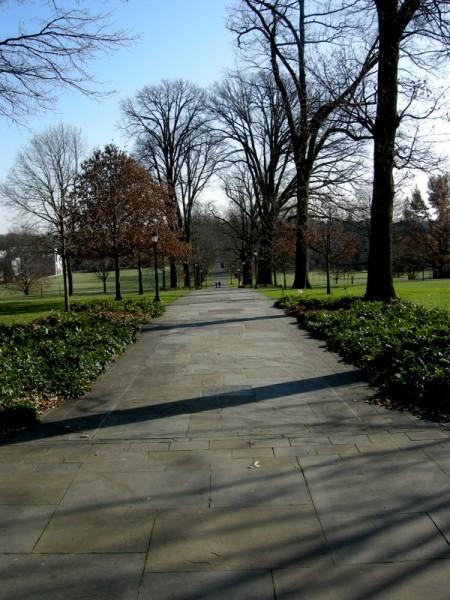 Scott Arboretum at Swarthmore College 12-1-2013 2-34-58 PM