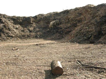Moriuchi compost 5-25-2014 5-07-43 PM