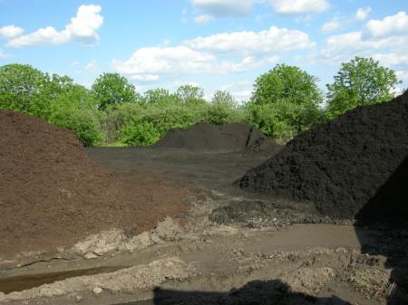 Moriuchi compost 5-25-2014 5-22-54 PM