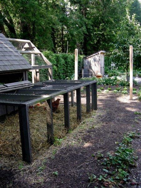 Bunting Garden Sept 2014 9-6-2014 1-47-22 PM