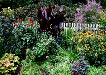 Cresson Garden Fall 2014 9-6-2014 4-22-13 PM