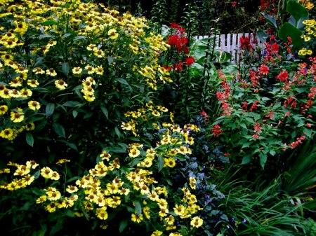 Cresson Garden Fall 2014 9-6-2014 4-32-08 PM