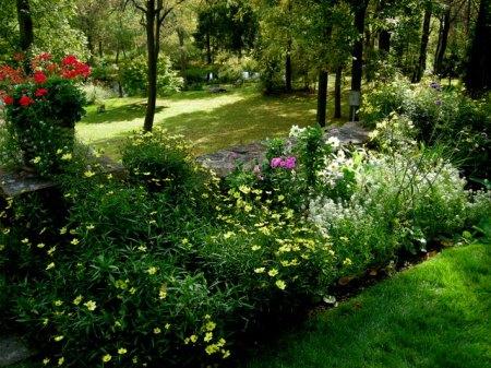 Kring Garden fall 2014 10-5-2014 3-55-30 PM