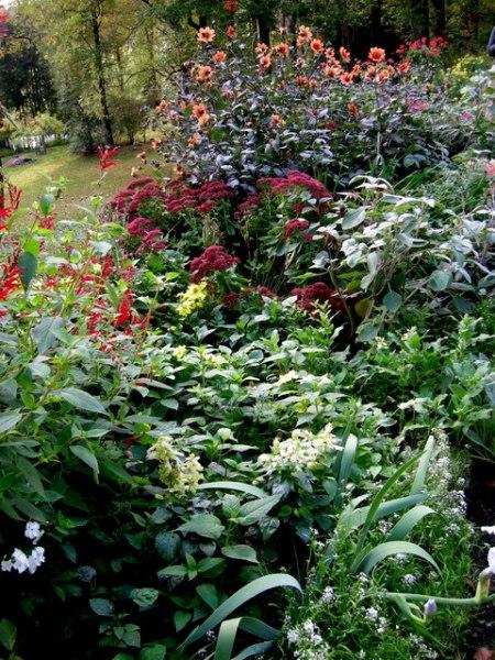 Kring Garden fall 2014 10-5-2014 3-56-32 PM
