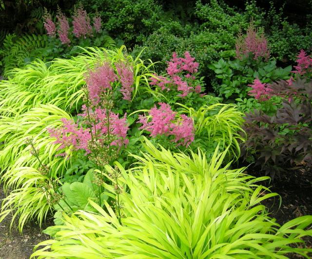 Garden Design | Carolyn'S Shade Gardens