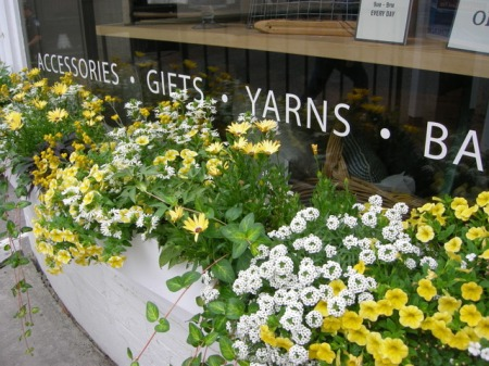 window boxes in Camden Maine 7-14-2015 5-52-04 PM