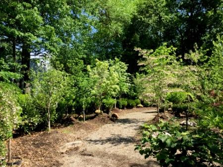Ambleside Gardens 6-2-2016 10-32-23 AM
