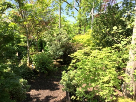 Ambleside Gardens 6-2-2016 10-52-44 AM