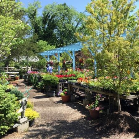 Ambleside Gardens 6-2-2016 11-19-48 AM