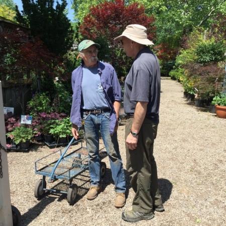 Ambleside Gardens 6-2-2016 11-32-32 AM
