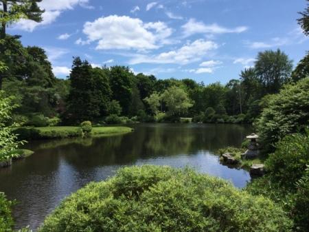 Ascitou Gardens 2016 7-20-2016 1-09-43 PM