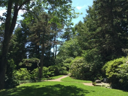 Ascitou Gardens 2016 7-20-2016 1-25-30 PM
