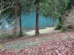 colesbourne-lake-2-10-2017-5-16-18-am