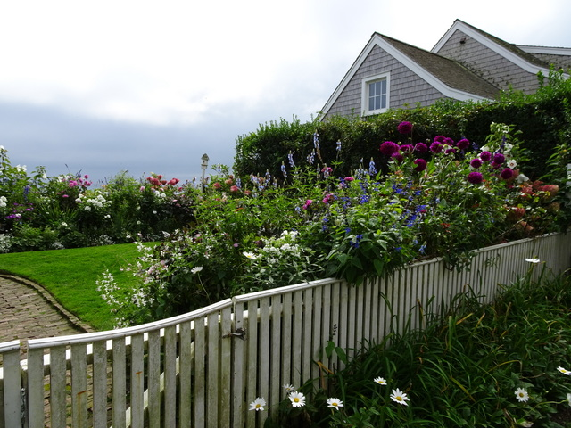 Gardens In Sconset On Nantucket Island » Nantucket Sept 2017 9 15 2017  10 18 00 AM