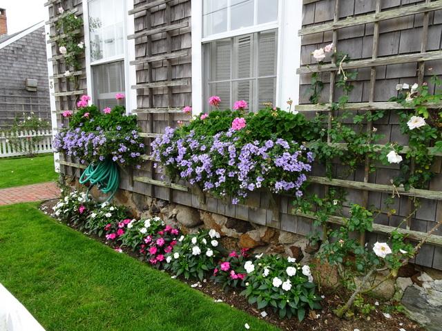 Gardens In Sconset On Nantucket Island » Nantucket Sept 2017 9 15 2017  9 53 29 AM