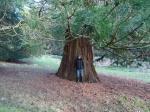 Coleesbourne Park